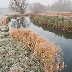 River Brett water meadows in winter by Christopher Cullen