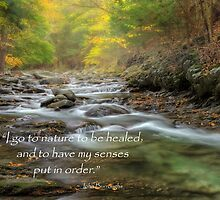 I Go To Nature by Bill Wakeley