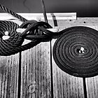 Mooring Ropes by Bob Wall