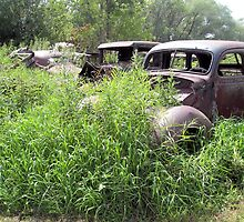 Auto Graveyard by gurineb