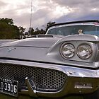 Silver Thunderbird by Neil Bushby