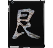 Defiance Tough Kanji iPad Case/Skin