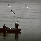 Preying gulls by iamelmana