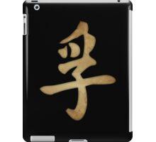 Truth Kanji iPad Case/Skin