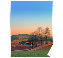 Trees, panorama and sunset | landscape photography Poster