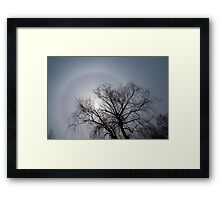 Sun Halo, Trees And Silver Gray Winter Sky Framed Print