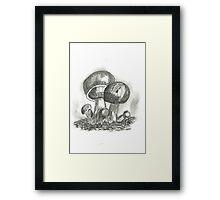 Mushrooms II Framed Print