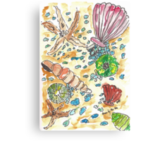 Scattered Seashells I Canvas Print
