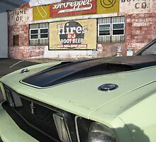 Mustang Sally by Arlene Zapata