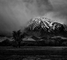 Big Pine California II by Jeffrey  Sinnock
