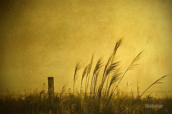 Land of Stillness by Chris Armytage™
