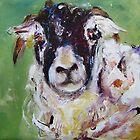 Curious sheep  by artistpixi