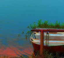 Rusty Boat by Christy Leigh