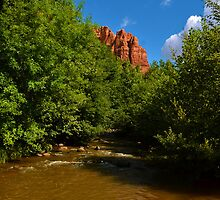 Cathedral Rock at Sedona by Timothyoleary