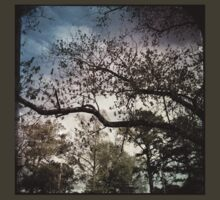 Bruised Branches by Truckula
