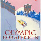 Olympic Bobsled, Lake Placid by Vintagee