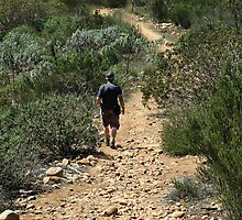 In Sycamore Canyon by heatherfriedman