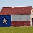 Lone Star Barn by venny