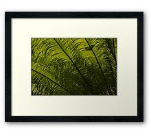 Tropical Green Curves and Diagonals Framed Print