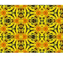 Kaleidoscopic Garden 12 Photographic Print