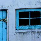 Malibu shed by Tim Horton