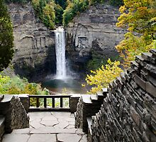 Taughannock Falls Overlook Landscape by Christina Rollo