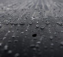 Rain drops on granite by Steely28