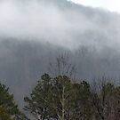 Foggy Mountain by Susan S. Kline