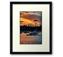 Rose Bay marina Framed Print
