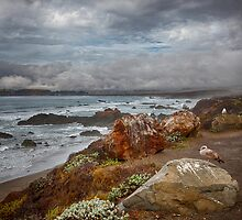 California Coast by George Cathcart