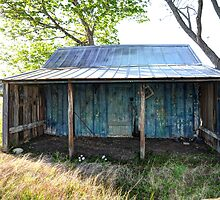 Old Shed by venny