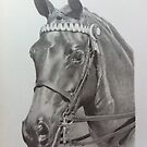 Horse commission  by Karen Townsend