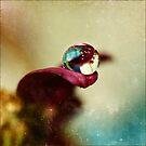 Tongue by Christine Dyrnes