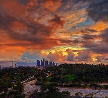 Los Angeles Storm by Carrie Patterson