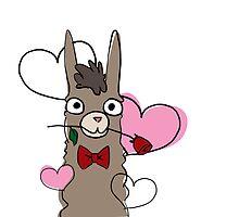 Loving Llamas by Danielle Harmon