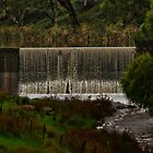 The Railway Dam by Deborah McGrath