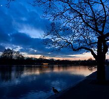 London Hyde Park sunset by bulder87