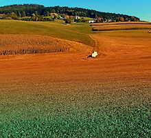 Colorful farmland scenery | landscape photography by Patrick Jobst