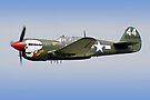 "Curtiss P-40M Kittyhawk -  ""Lulu Belle"" - Dunsfold 2013 by Colin J Williams Photography"