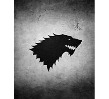 House Stark (Game of Thrones) Photographic Print