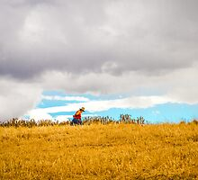 Old Woman Walking On Hill by Roldan53