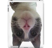 Crazy Gracie Upside Down Kitty iPad Case/Skin