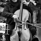 The Cellist by Andrew Dickman
