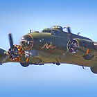 Sally B - Close Pass - Shoreham - 2013 by Colin J Williams Photography