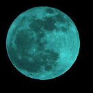 Once In A Blue Moon by Shellie Phipps