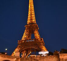 Eiffel tower at night by STEPHEN SHONE