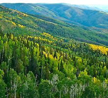 Fall in Colorado Springs by photopen4