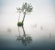 Far in the Mist by Mikko Lagerstedt