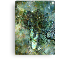 FORTUNE OR FATE? Canvas Print