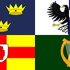 Four Provinces Flag of Ireland by abbeyz71